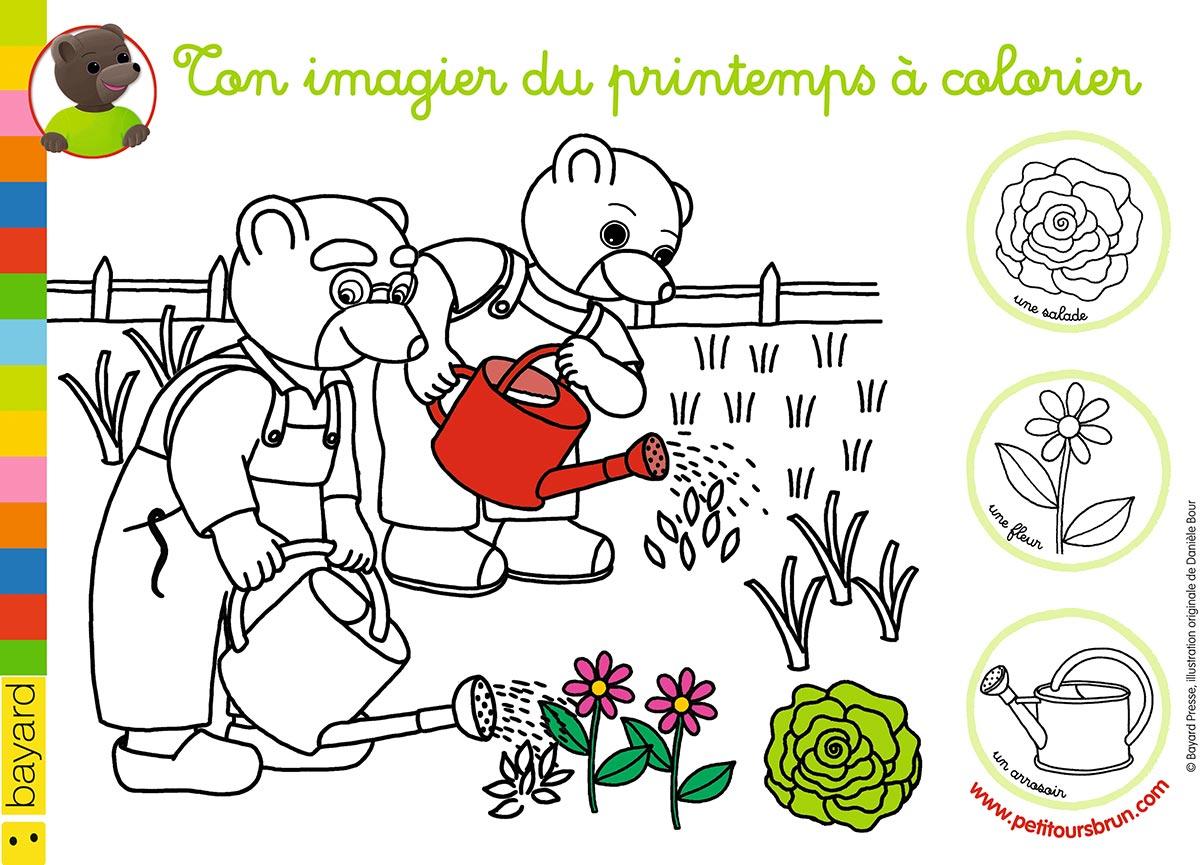 Colorie le printemps avec Petit Ours Brun